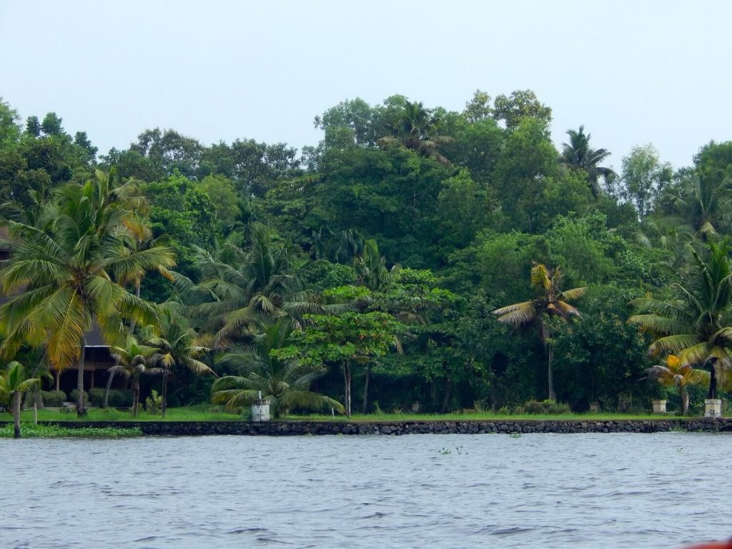 Alleppey Adventures