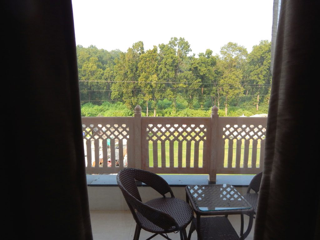 My balcony with the most gorgeous view of the forest!