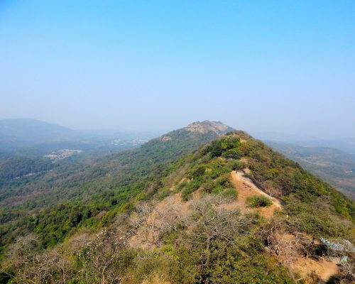 Detailed guide to trekking at Karnala Bird Sanctuary