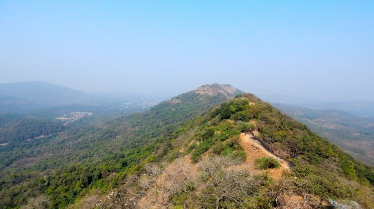 A detailed guide to trekking at Karnala Bird Sanctuary