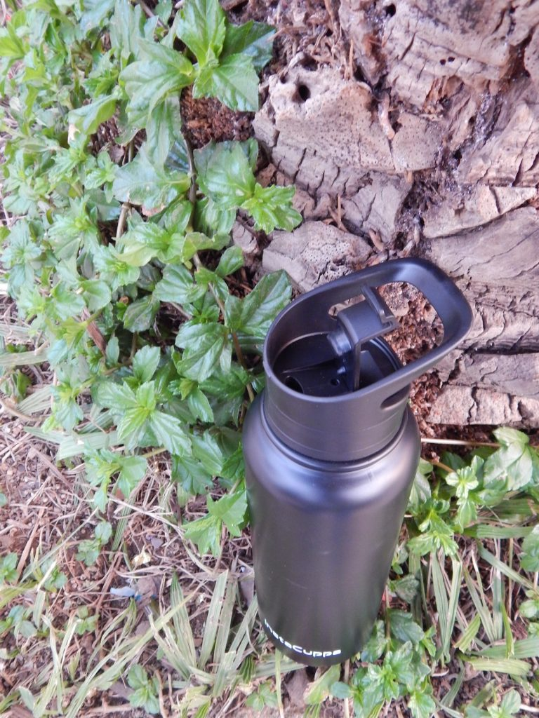 InstaCuppa Thermosteel Bottle
