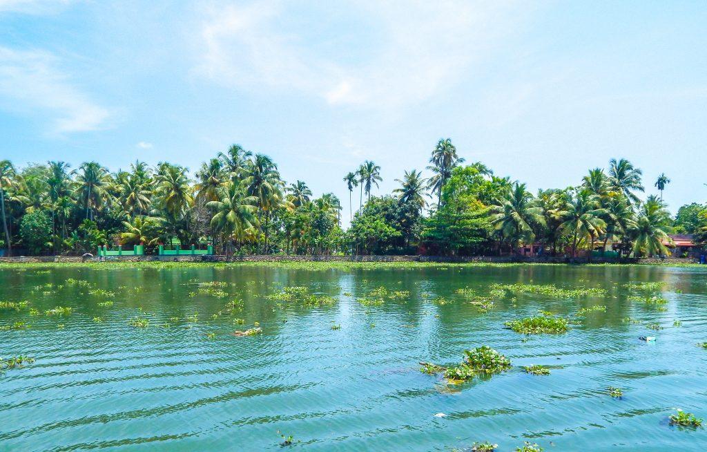 Scenes from Kerala houseboat
